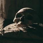 Il Cimitero delle Fontanelle, gallerie scavate nel tufo, conserva migliaia di ossa