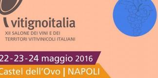 Dal 22 al 24 maggio Castel dell'Ovo ospita VignetoItalia